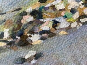 Mosaic rock pools